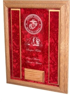 Etched Soldier Case - Awards Display Case