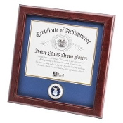 U.S. Air Force Medallion Certificate Frame