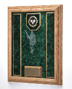 Deluxe Awards Display Case Awards Display shadowbox, Military Award Frame