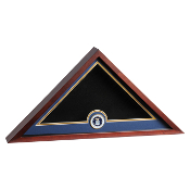 Air Force Medallion Flag Display case