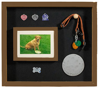 Dog Memorial Display Case, Dog Memorial shadow box