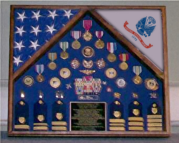 Large Flag Display Cases